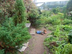 Дети в ботаническом саду