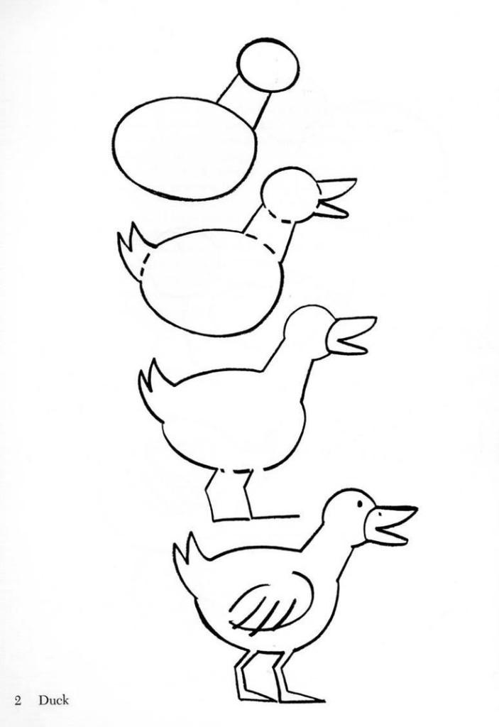 Рисуем морских животных, рыб и птиц