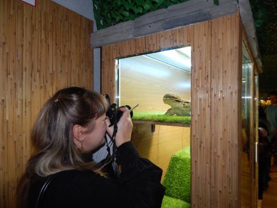 отзыв о выставке рептилий